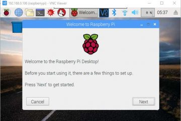 Remote Raspberry Pi VNC